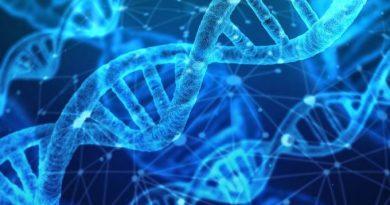 Projeto inédito estudará genoma de milhares de brasileiros