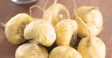 Maca Peruana: Você conhece esse super alimento?