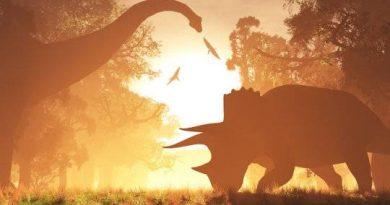 Na era dos dinossauros, um ano tinha 372 dias de 23 horas e 30 minutos