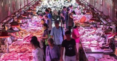 Coronavírus: China sob pressão após reabrir mercados de produtos frescos