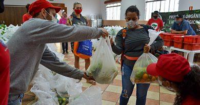 Famílias do Paraná recebem 5 toneladas de alimentos do MST e de pequenos agricultores