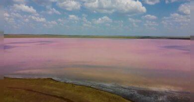 Covid 19: A lenda do Lago Rosa do Cazaquistão