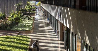 Desafios no retorno remoto das aulas na Universidade de Brasília
