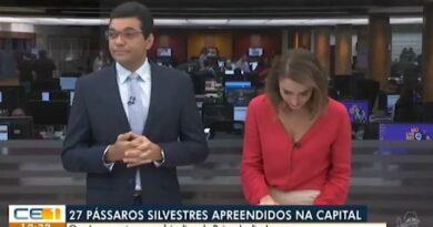 """""""Periquito"""" faz apresentadores da Globo caírem na risada em jornal ao vivo"""