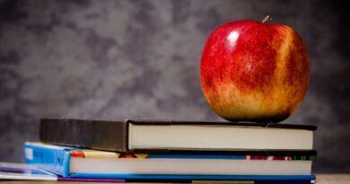Processo seletivo SEPLAG AC: 423 oportunidades na Educação