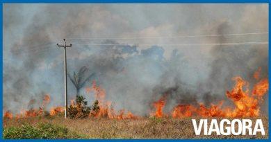 Bombeiros fazem recomendações sobre controle de queimadas no Piauí