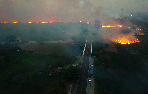 Consequência de queimadas, chuva escura pode atingir São Paulo neste fim de semana
