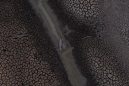 Fogo no Pantanal tem origem na ação humana, mostra perícia