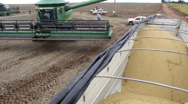 Safra de grãos deve ser 4,2% superior à produção de 2019, diz IBGE